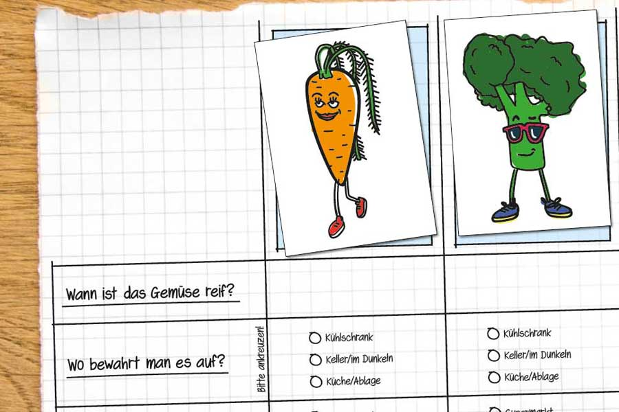 Illustrationsmaterial des Workshops