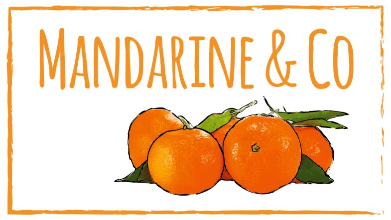 mandarine clementinen und orangen lagern mehrwertkonsum. Black Bedroom Furniture Sets. Home Design Ideas